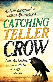 CatchingTellerCrow